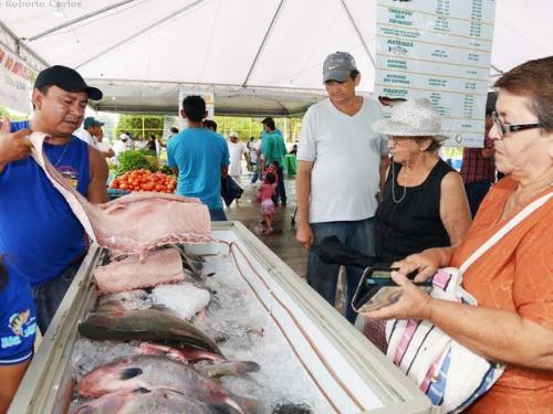 Feirão do Pescado Especial Semana Santa acontece de 16 a 19 de abril