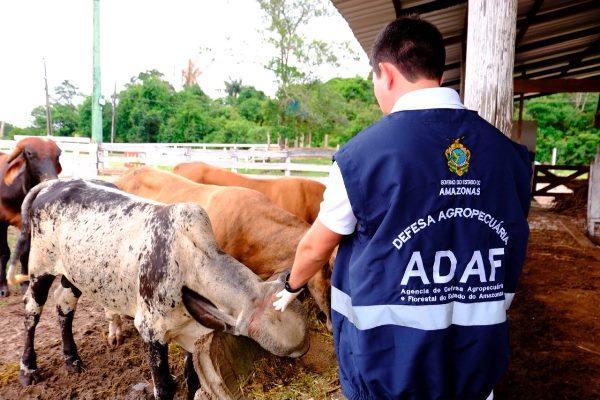 Concurso da Adaf tem resultado final homologado no Diário Oficial