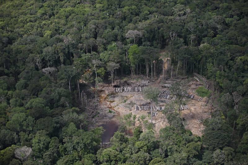 Com nova lei, Pará promove regularização fundiária e combate grilagem e desmatamento