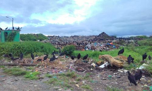 MPAM exige que Prefeitura de Parintins resolva problema dos lixões a céu aberto