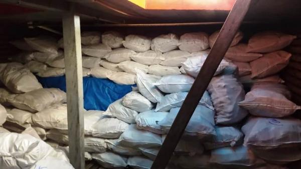 PF apreende quase 9 toneladas de pescado ilegal, em Tabatinga (AM)