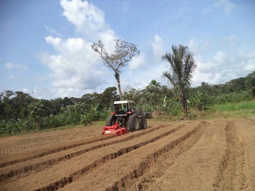 Em Lábrea, setor primário recebe investimentos por meio de crédito rural