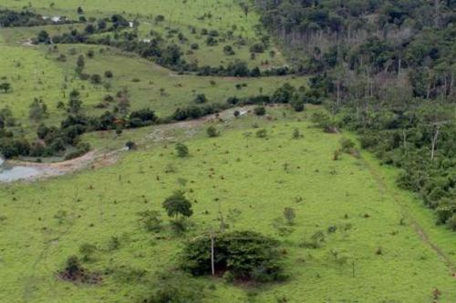 Começa hoje (12) prazo para entrega da declaração de propriedade rural