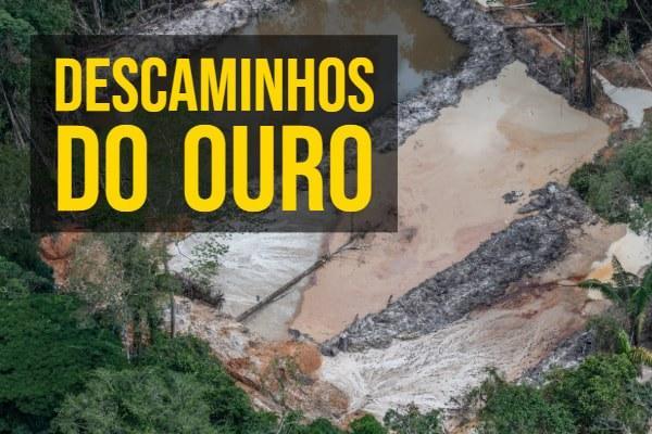 Por ano, 30 toneladas de ouro retiradas ilegalmente de garimpos do Tapajós, diz MPF