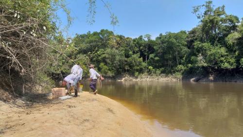 Ação protegerá 10 mil ovos de quelônio em praias de unidade de conservação no AM