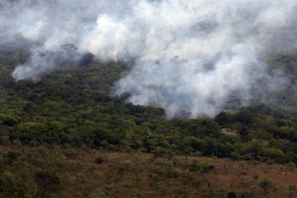Amazônia receberá R$ 1 bilhão de fundo da Lava Jato