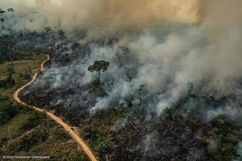 Estados da Amazônia vão receber R$ 430 milhões para combate às queimadas