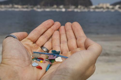 Pesquisas indicam ingestão de microplásticos por humanos