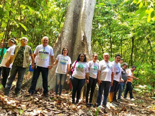 No 'Dia da Árvore', trilha do  Parque Estadual Sumaúma é reaberta