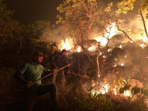 Parlamento do Reino Unido analisa sanções ao Brasil por queimadas na Amazônia