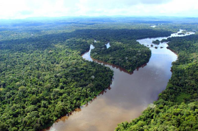 Pará cria 'Fundo da Amazônia Oriental' para desenvolvimento sustentável da região