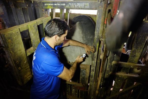 Adaf realiza segunda etapa de campanha contra febre aftosa no Amazonas