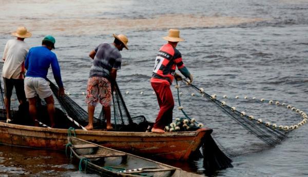 Começa hoje (15) o período de defeso de oito espécies de peixes da Amazônia