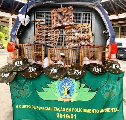 Polícia Ambiental apreende seis pássaros curiós na Ponte Rio Negro, em Manaus