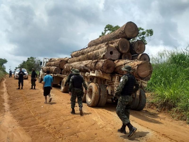 Operação apreende 38 toras de madeira ilegal, na Rodovia Santarém-Cuiabá