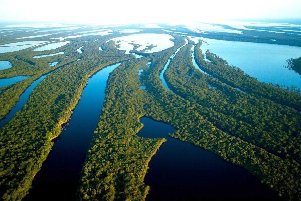 Com 400 ilhas, arquipélago Anavilhanas é retratado em websérie
