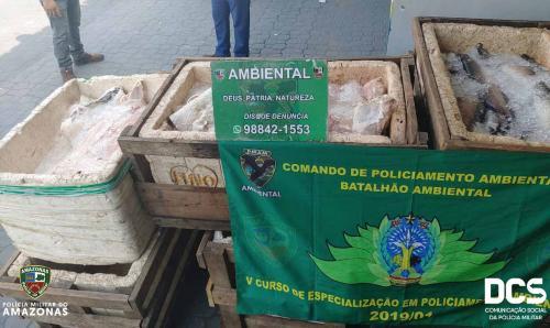 Polícia apreende uma tonelada de pirarucu e aruanã, na Panair, em Manaus