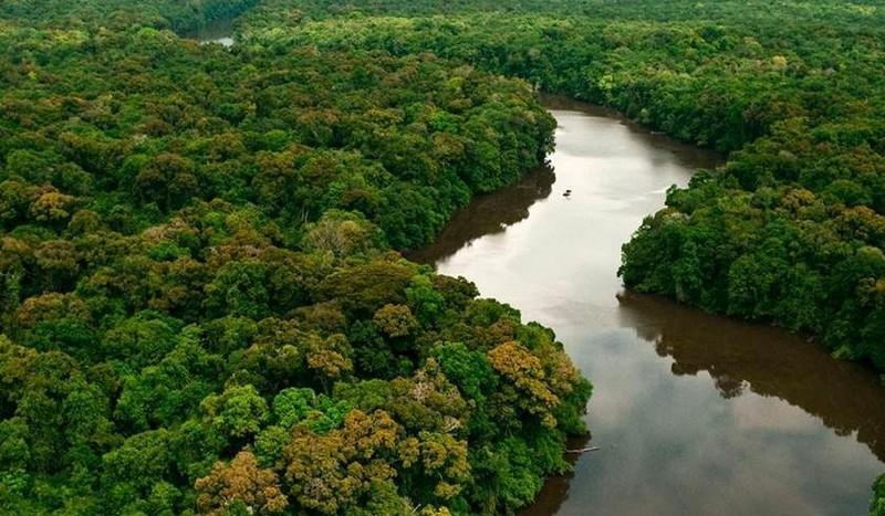 AGU vai em busca de R$ 555,3 milhões de infratores ambientais