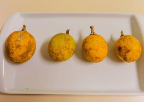 Estudo mostra que caramuri tem três vezes mais vitamina C que a laranja