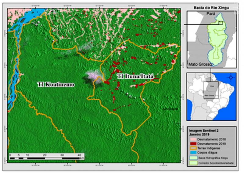 Invasões e desmatamento na terra indígena mais desmatada do Brasil preocupam Ibama e MPF, no Pará