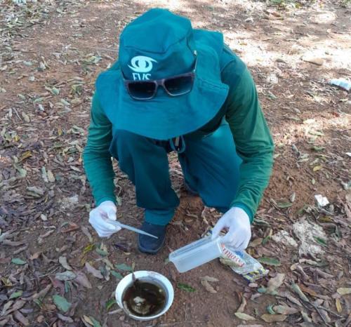 Laboratório Central descarta casos de dengue em Parintins