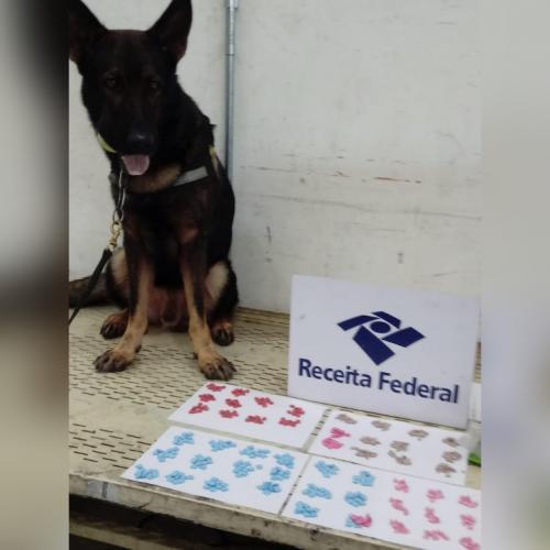 Receita Federal apreende 500 comprimidos de ecstasy avaliados em R$ 25 mil