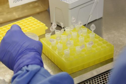 Fiocruz recebe material genético para apurar teste de coronavírus