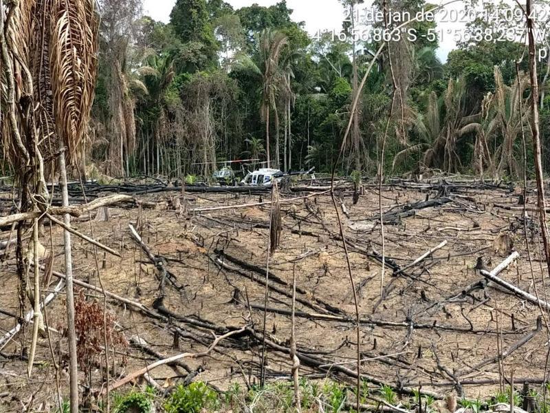 19 procuradores do MPF pedem que Ibama destrua maquinários apreendidos de grileiros em Itaituba