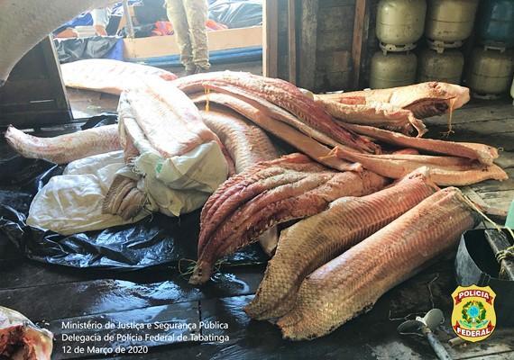 Polícia Federal apreende 2,5 toneladas de pirarucu em Tabatinga; dupla foi presa