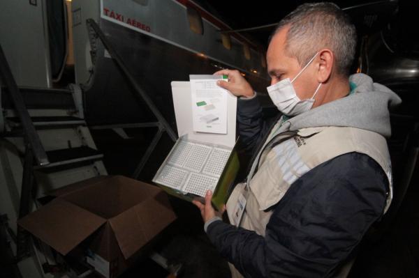 Amazonas recebe lote de insumos para 15 mil testes de Covid-19