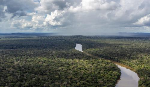 Operação prende 13 pessoas por invasão de terras e desmatamento em Boca do Acre (AM)