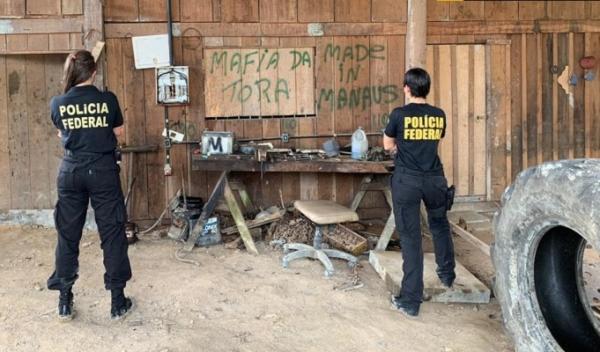 PF flagra tráfico de madeira e furto de energia, em Rio Preto da Eva (AM)