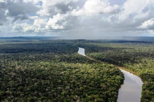 MPF quer impedir grilagem de terras indígenas no Amazonas
