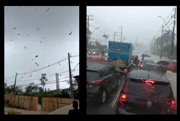 Temporal, com ventos fortes, atinge Manaus, nesta segunda (26) e assusta moradores