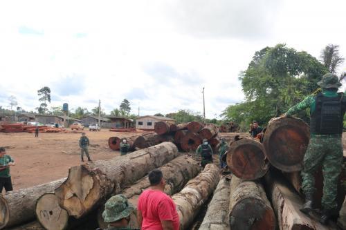 Em Operação 'Tamoiotatá', Madeireira é multada em mais de R$ 190 mil em Manicoré
