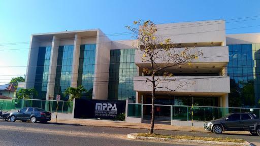 MPPA ajuíza Ação para responsabilizar município após poda que causou morte de garças, em Santarém