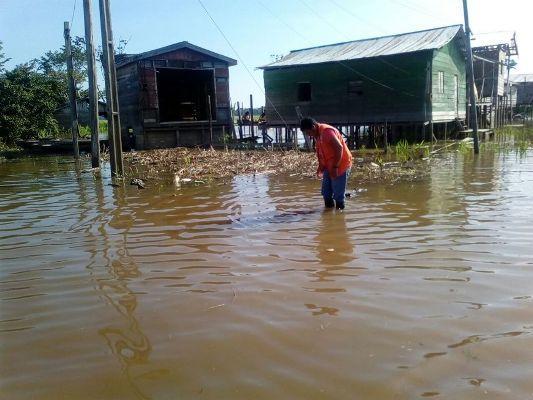 Defesa Civil do AM emite alerta de enchente para região do Alto Solimões