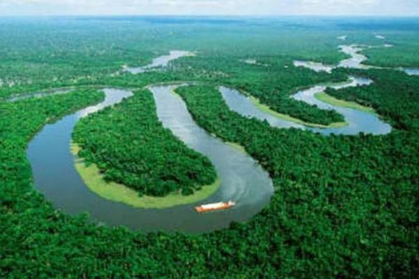 Novas cidades integram lista de prioridade de preservação na Amazônia