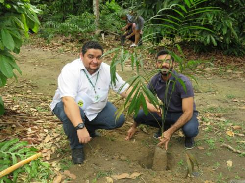 Conab planta 85 mudas de árvores em Manaus