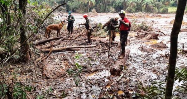 Amazonenses ajudam nas buscas por desaparecidos em Brumadinho